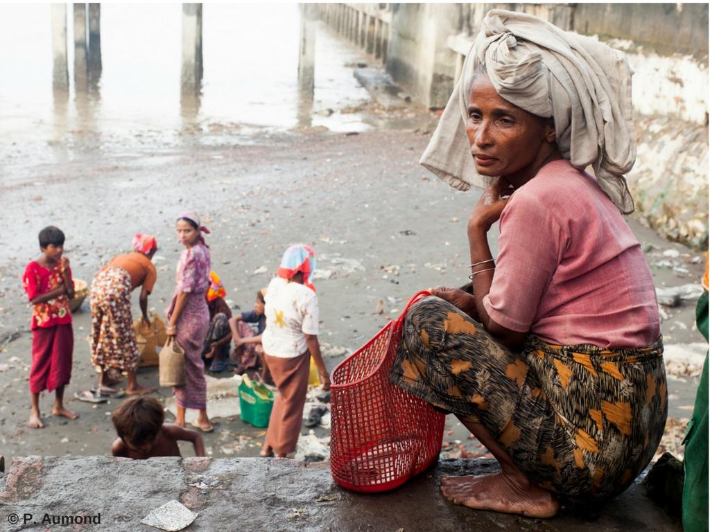 PÉTITION URGENTE : le Président Macron doit stopper le massacre des Rohingya