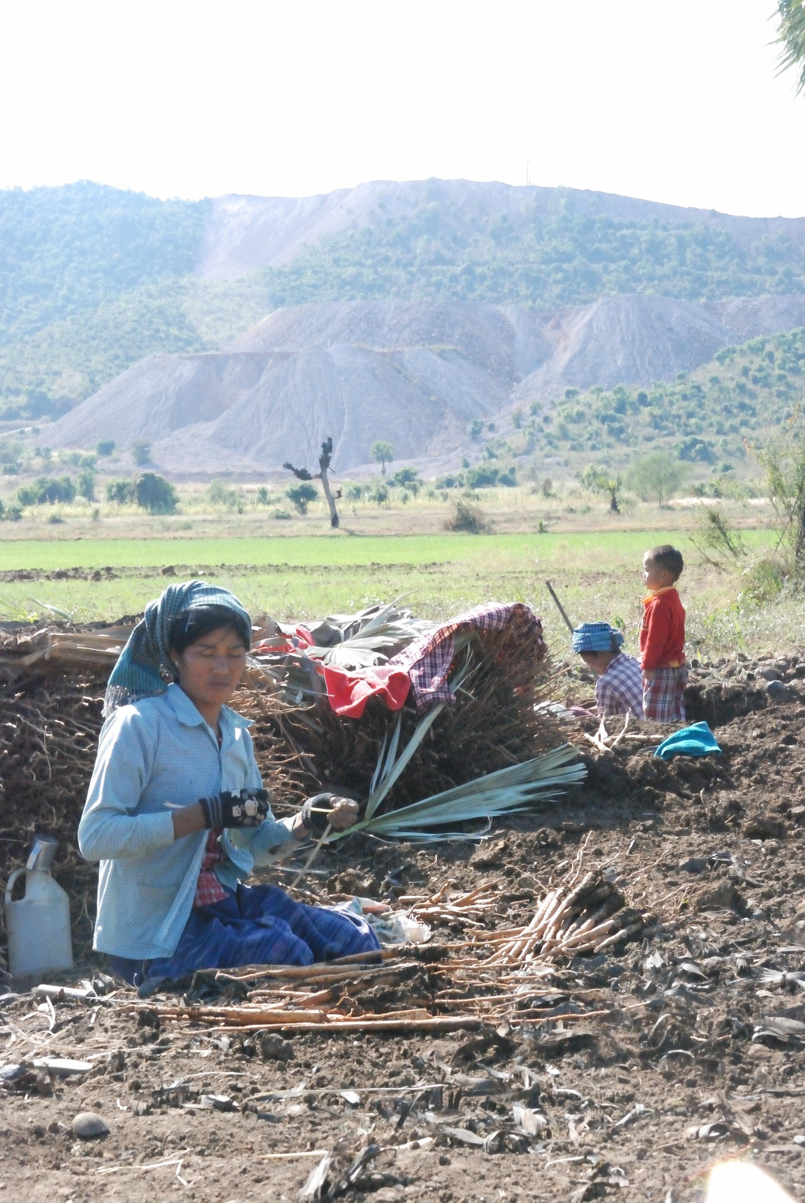 Quels droits pour les paysans de Birmanie ?