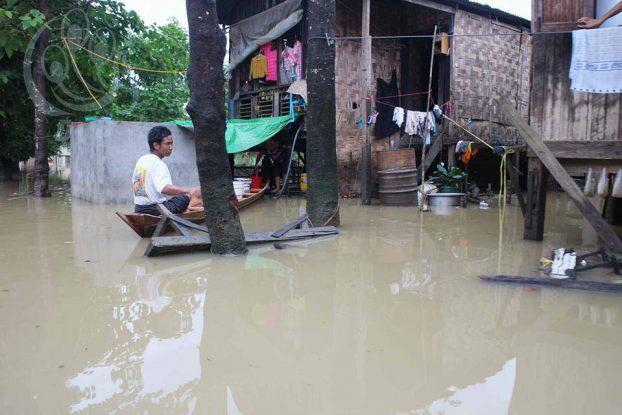 Conséquence de la déforestation en Birmanie : des inondations détruisent des milliers d'hectares de terres agricoles